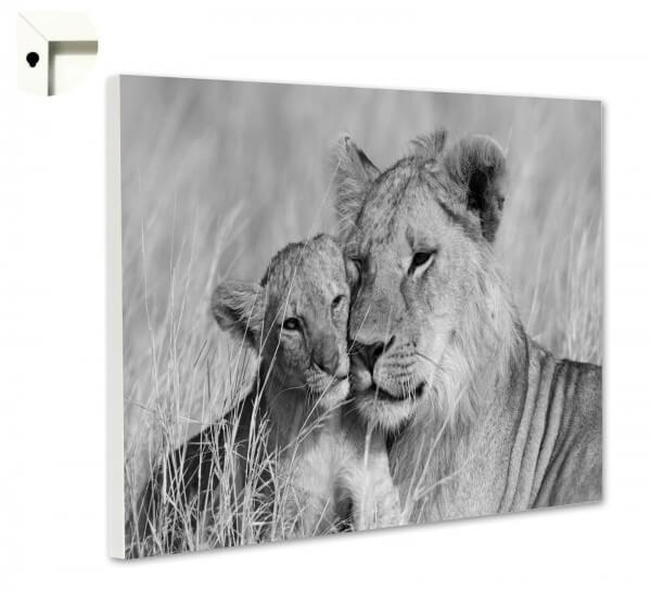 Magnettafel Pinnwand Tiere Löwe Mutter & Kind