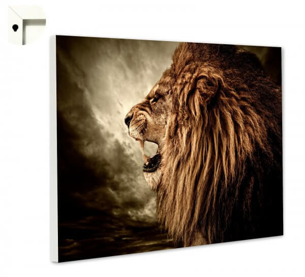Magnettafel Pinnwand Memoboard Motiv Tiere Löwe