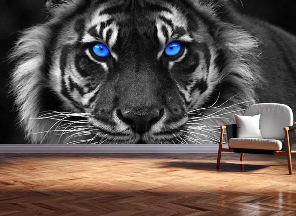 Vlies Tapete XXL Poster Fototapete Panorama Tiger