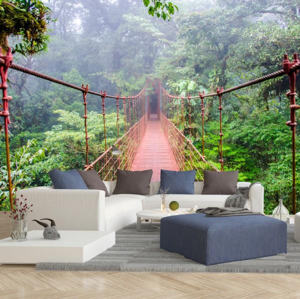 Vliestapete Poster Fototapete Brücke im Regenwald Costa Rica