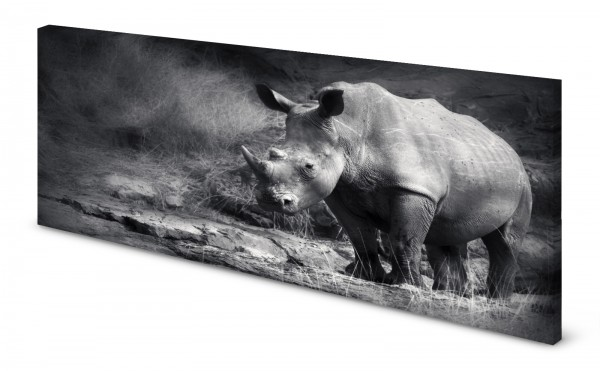 Magnettafel Pinnwand Bild Panorama Nashorn gekantet