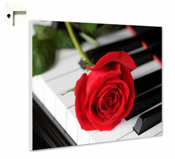 Magnettafel Pinnwand Klavier rote Rose