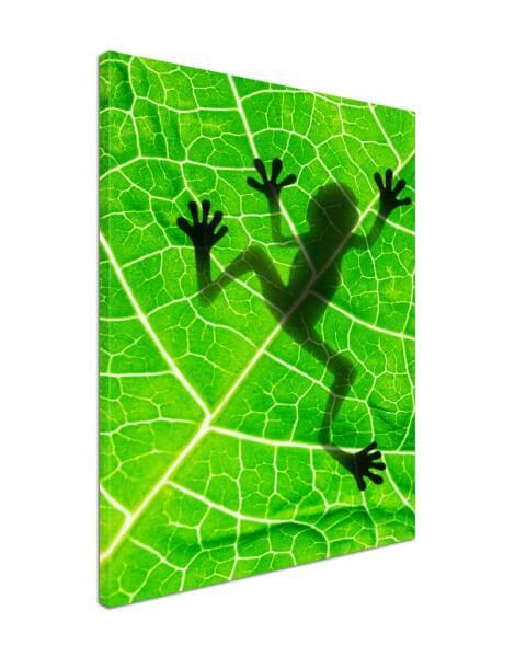 Leinwand Bild edel Tiere Frosch in grün