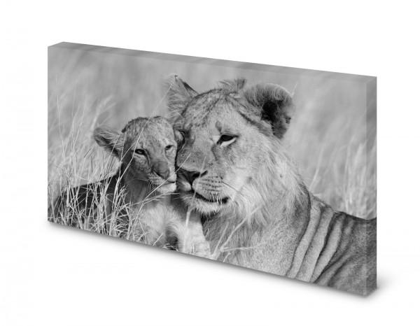 Magnettafel Pinnwand Bild Löwe Löwin Junges gekantet