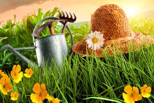 Magnettafel Pinnwand XXL Bild Gartenfreunde Gartenlust Garten