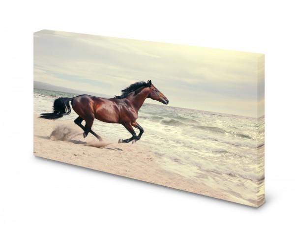Magnettafel Pinnwand Bild Pferd Strand Meer Galopp gekantet