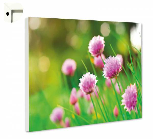 Magnettafel Pinnwand Natur Blumen Sommerblumen