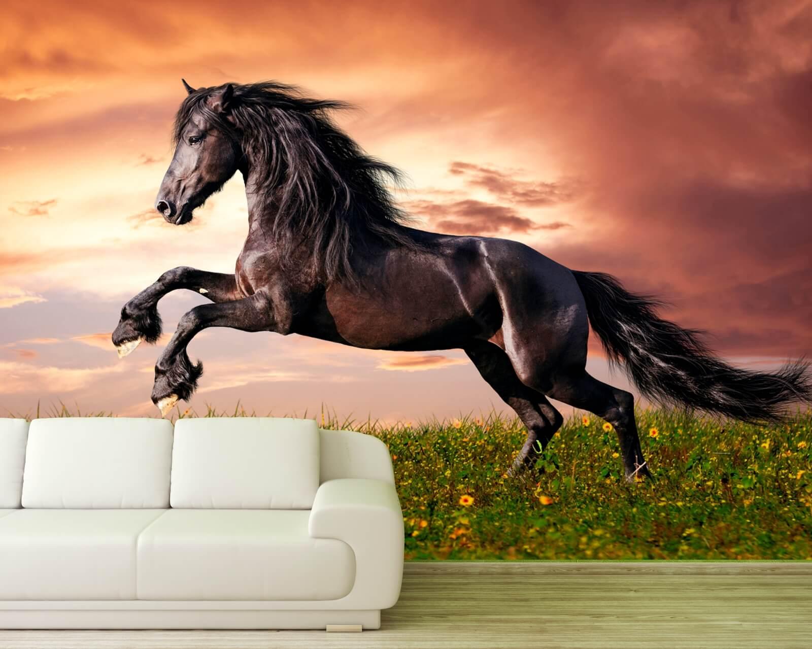 Vlies Fototapete Pferd Tiere Friese Gallop Landschaft Wohnzimmer Tapete XXL 252