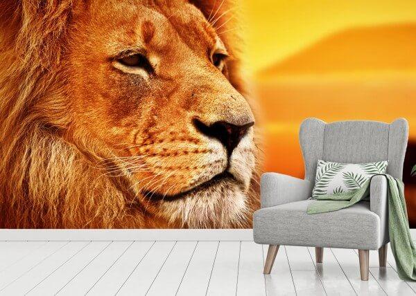 Vlies Tapete XXL Poster Fototapete Panorama Löwe Afrika