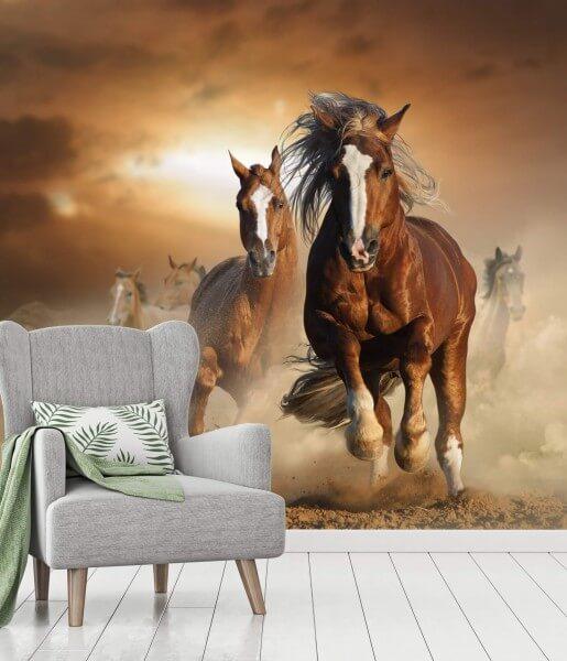 Vlies Tapete XXL Poster Fototapete Haftlinger Pferde
