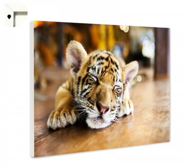 Magnettafel Pinnwand Memoboard Tiere Tiger