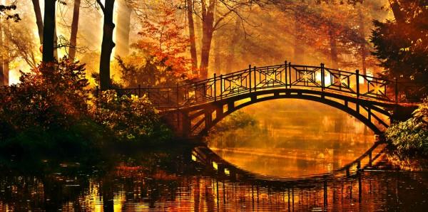 Magnettafel Pinnwand Bild XXL Panorama Natur Fluss Brücke