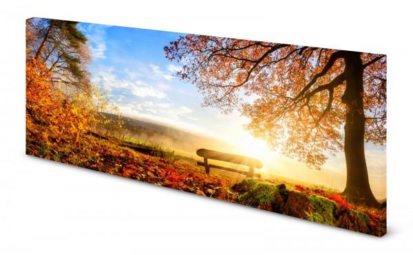 Magnettafel Pinnwand Bild Parkbank Bank Herbst Bäume gekantet