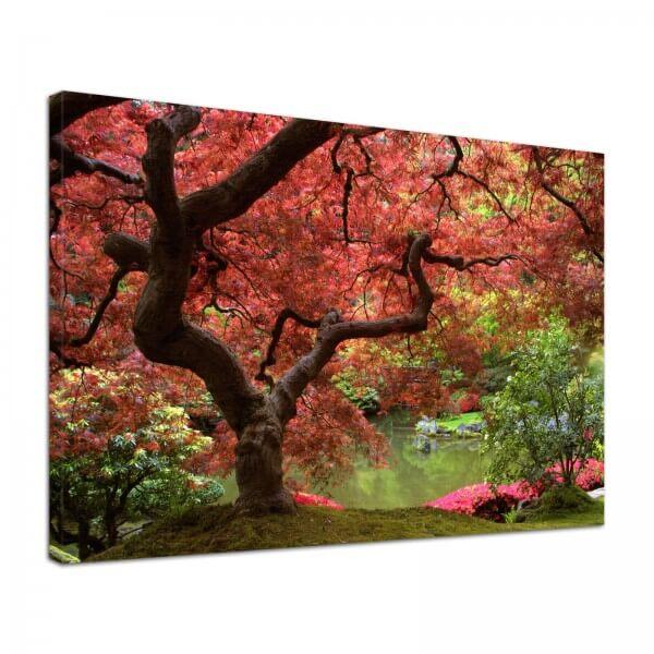Leinwand Bild edel Natur Japanischer Garten zwei