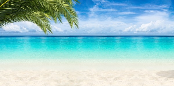 Magnettafel Pinnwand Bild XXL Panorama Strand Karibik