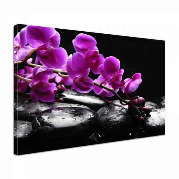 Leinwandbild Bild Wandbild Natur & Blumen Orchidee Steine Zen