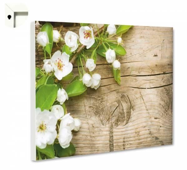 Magnettafel Pinnwand Blumen Apfelblüten in weiß auf Holz