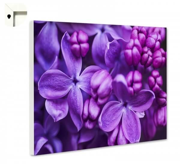 Magnettafel Pinnwand Natur Blumen Flieder lila