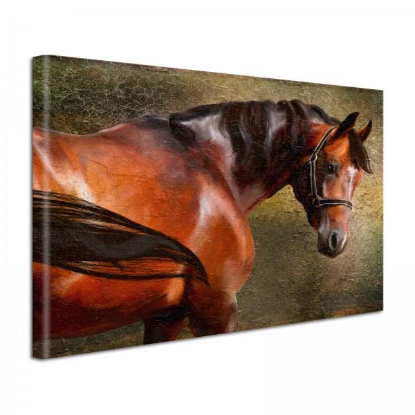 Leinwandbild Gemälde Pferd