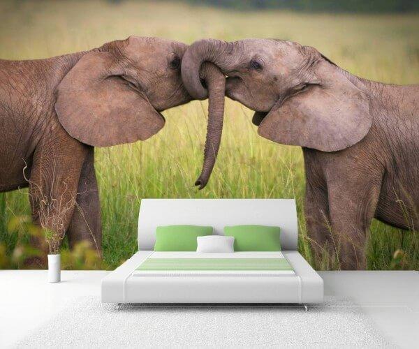 Vlies Tapete XXL Poster Fototapete Elefanten Babys Freunde