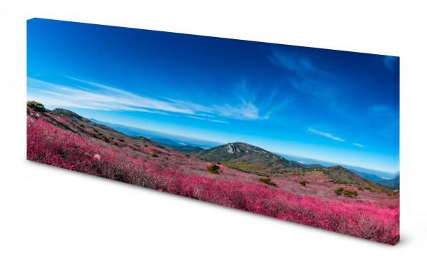 Magnettafel Pinnwand Bild Korea Nationalpark gekantet