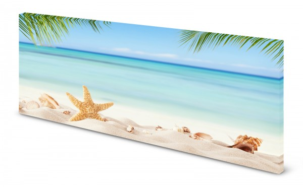 Magnettafel Pinnwand Bild Seestern Muscheln Strand gekantet