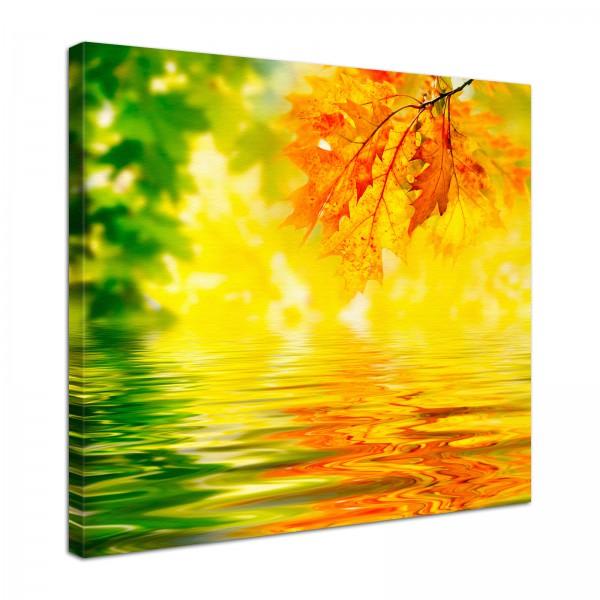 Leinwand Bild edel Natur Herbst Sonne