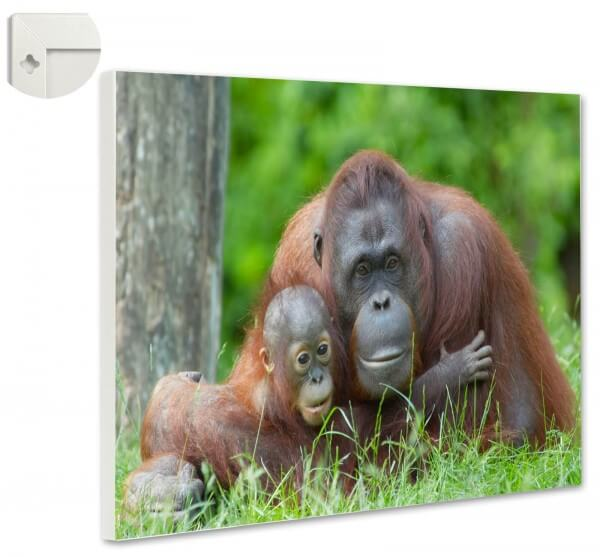 Magnettafel Tiere Affe Orang-Utan Mutter & Kind