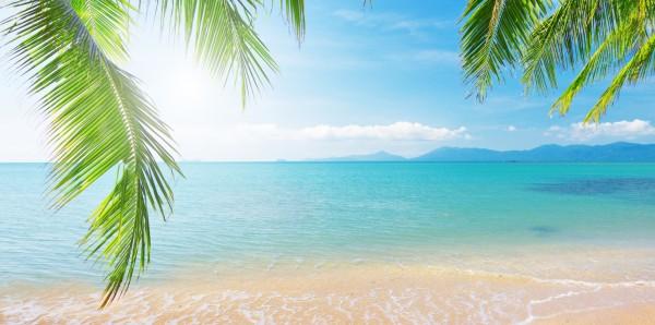 Magnettafel Pinnwand Bild Panorama Sommer Sonne Strand Meer