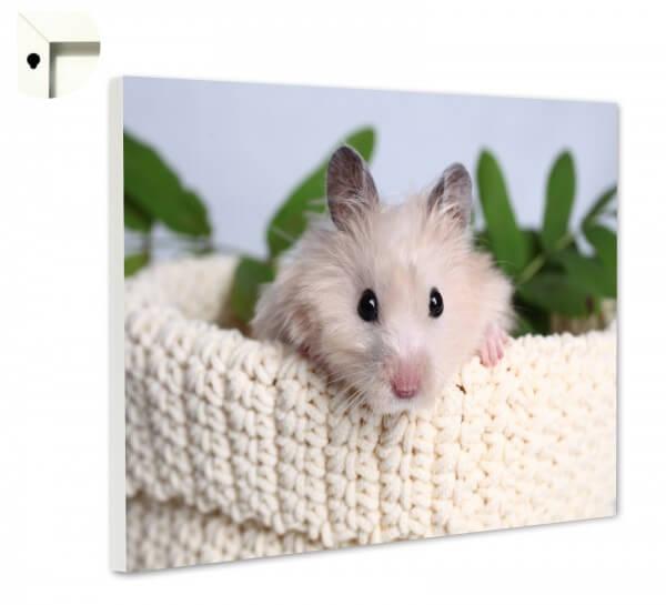 Magnettafel Pinnwand Memoboard Motiv Tiere Hamster