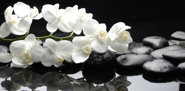 Magnettafel Pinnwand XXL Magnetbild Orchideen Steine Zen
