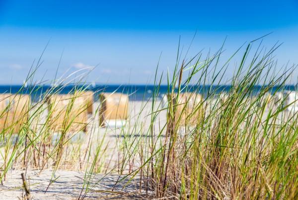 Magnettafel Pinnwand XXL Bild Strandkorb Düne Strand