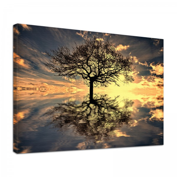 Leinwand Bild edel Natur Lebensbaum