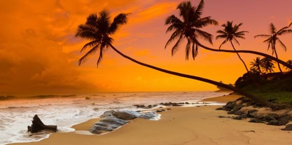 Magnettafel Pinnwand Bild XXL Natur Strand Sonnenuntergang