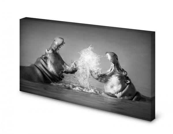 Magnettafel Pinnwand Bild Nilpferd Flusspferd Hippo gekantet