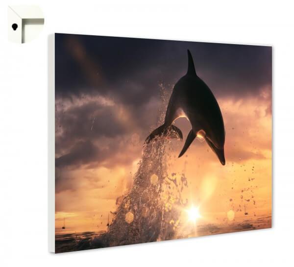 Magnettafel Pinnwand Memoboard Tiere Delfin