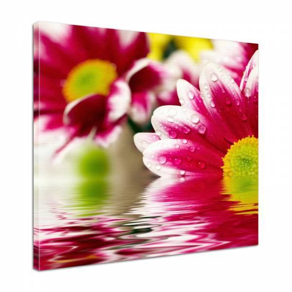 Leinwand Bild edel Blumen Gerbera