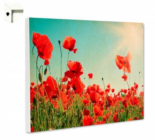 Magnettafel Pinnwand Blumen Mohnblumenwiese im Vintage Stil