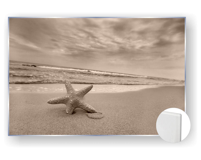 acrylbilder glasbild bild 5mm edel natur seestern meer strand ebay. Black Bedroom Furniture Sets. Home Design Ideas
