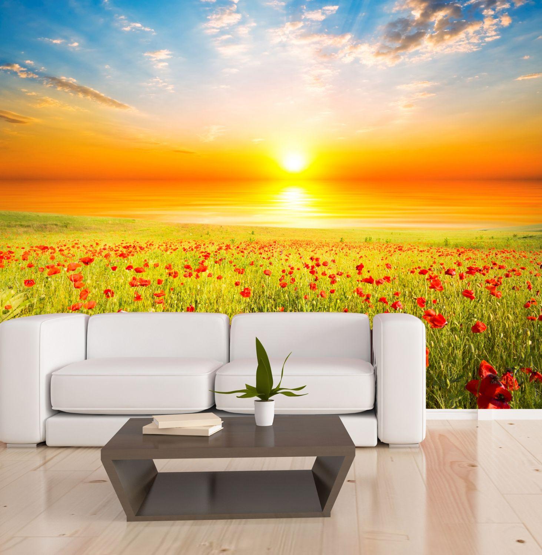 xxl poster fototapete wandtapete vlies natur mohnblumen wiese im sonnenaufgang ebay. Black Bedroom Furniture Sets. Home Design Ideas