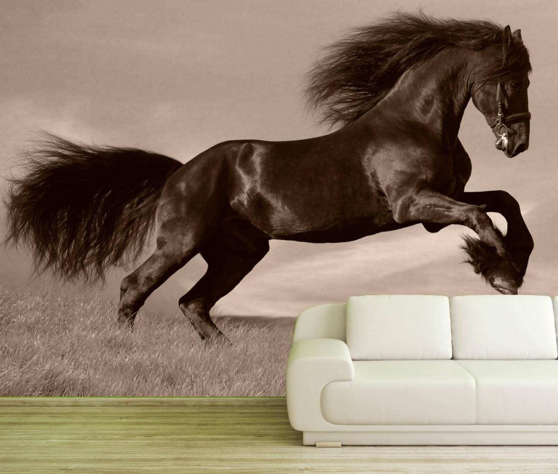 vlies tapete xxl poster fototapete pferd friese schwarz  ebay